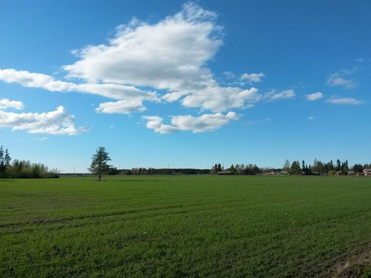 Blue, white and green. Colours of the sunny day in Finland.