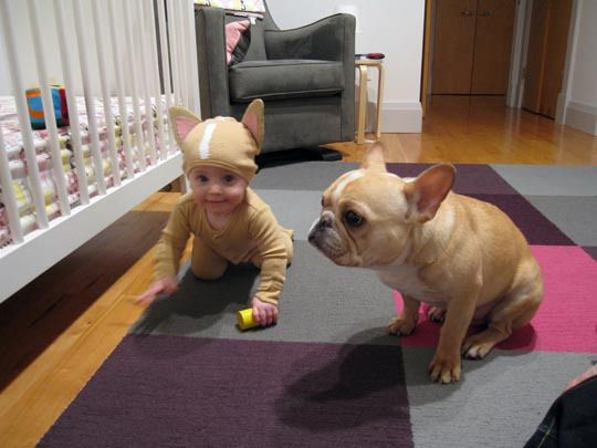 If I had a kid, I would dress is up as my dog.