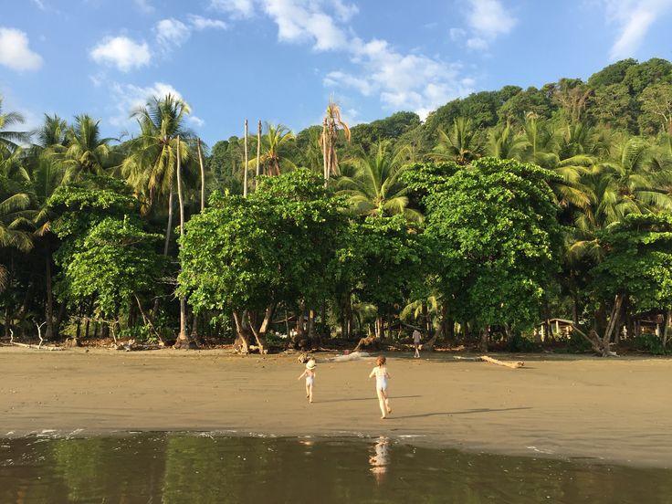 De Monteverde à Dominical Aujourd'hui nous quittons les montagnes de Monteverde pour la côte Pacifique. Après une première partie de route sous forme de piste, nous faisons une première pause incontournable à Tarcoles, où l'on peut observer de très près d'énormes crocodiles sur le rivage de la rivière du même nom. Puis nous reprenons la route vers Dominical, point stratégique pour visiter le Parc Manuel Antonio et la côte pacifique, avant-dernière étape de notre périple au Costa Rica. Nous…