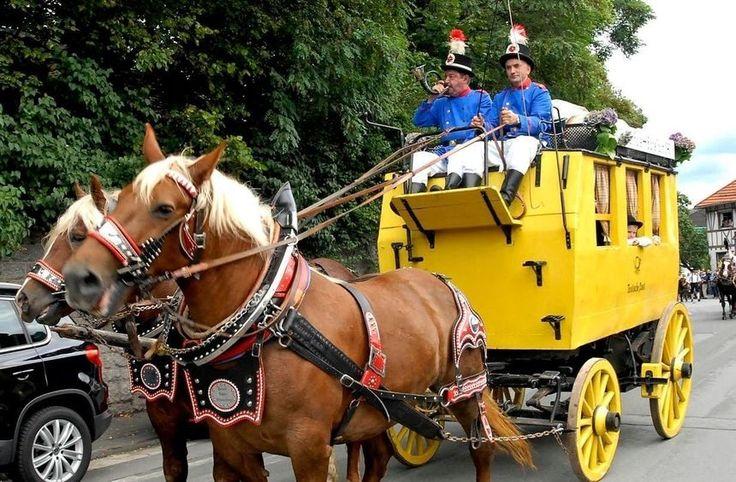 #Lindenfels: Protest gegen Pferde im Burgfestzug https://www.morgenweb.de/bergstraesser-anzeiger_artikel,-lindenfels-protest-gegen-pferde-im-burgfestzug-_arid,1087390.html?utm_content=buffercbf47&utm_medium=social&utm_source=pinterest.com&utm_campaign=buffer
