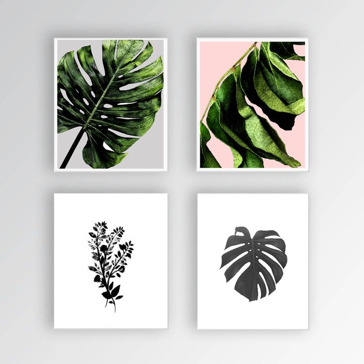 Leaf Print Set, Botanical Print, Nature Prints, Black and White, Nature Art, Nature Photography, Leaf Print Wall Art, Tropical Print #homedecorideas #homedecoronabudget #homedecordiy #homedecorideasmodern #homeoffice #homedecor #homeideas #wallart #walldecor #wallartdiy #art #print #digital #tropicaldecor #tropicalprint #botanicalprint #natureprints #blackandwhite #natureart