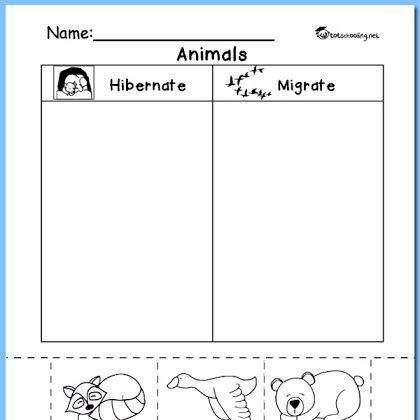 hibernation vs migration animal sorting worksheet k k learning preschool worksheets. Black Bedroom Furniture Sets. Home Design Ideas
