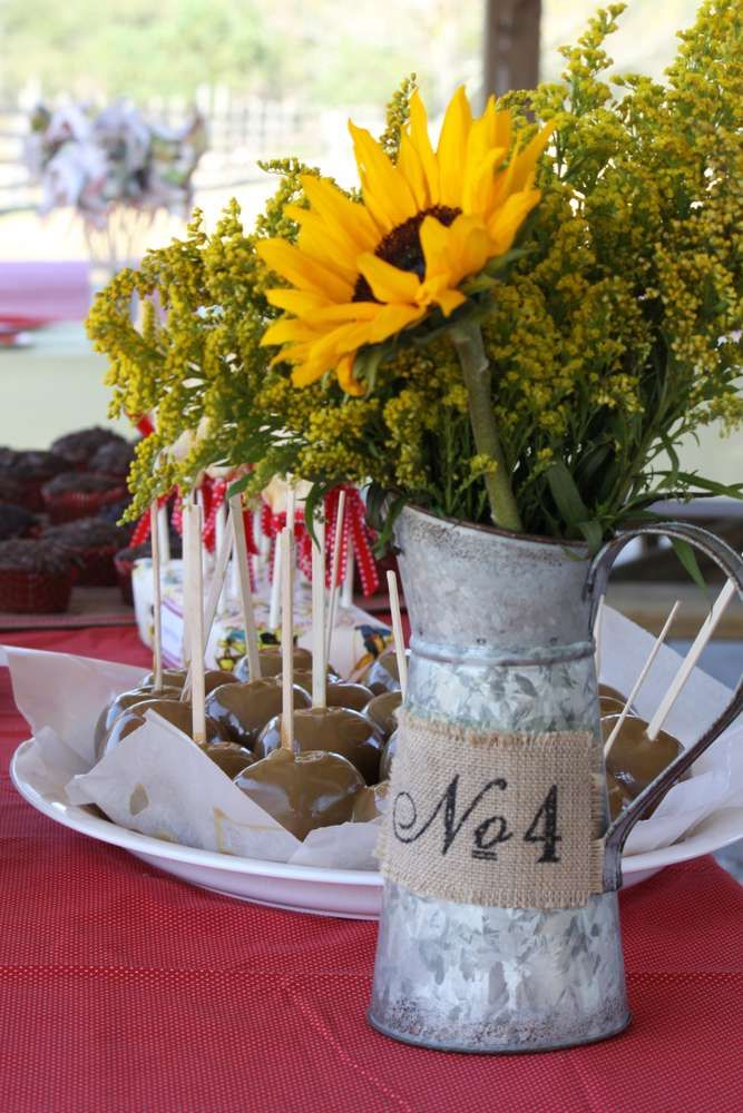 Farm, vintage, little Golden Books Birthday Party Ideas   Photo 18 of 26   Catch My Party