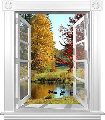 Fall Geese window mural Window Mural