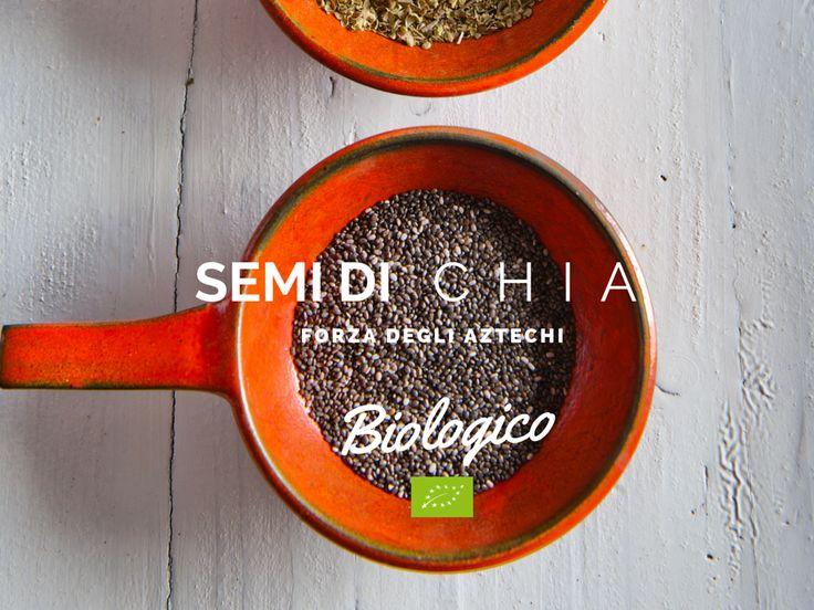 Semi di Chia | www.bacchedigoji.it