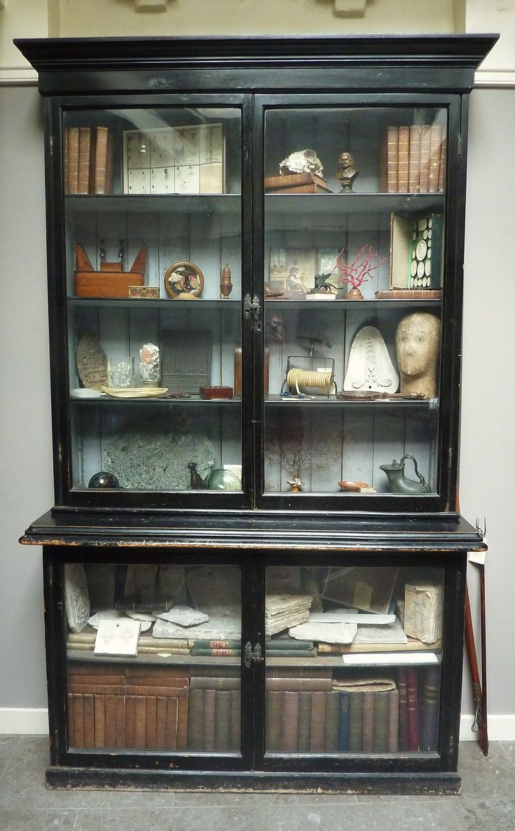 62 best images about Cabinet of curiosities - CONSERVA - on ...