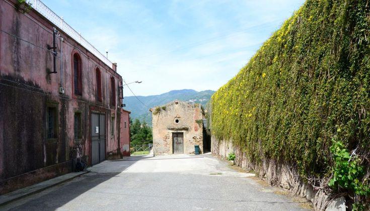 Τι φέρνει ο επαναπατρισμός ενός Ιταλοαργεντίνου στη Σικελία; Μα μοναδικά και λίαν ενδιαφέροντα κρασιά!