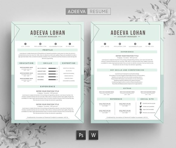 Best Creative Resume Template Lohan