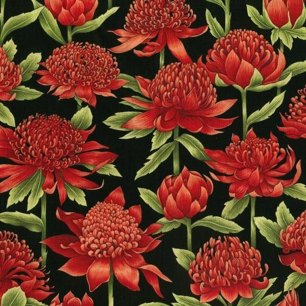 Nutex - Waratah Blooms On Black - cotton fabric