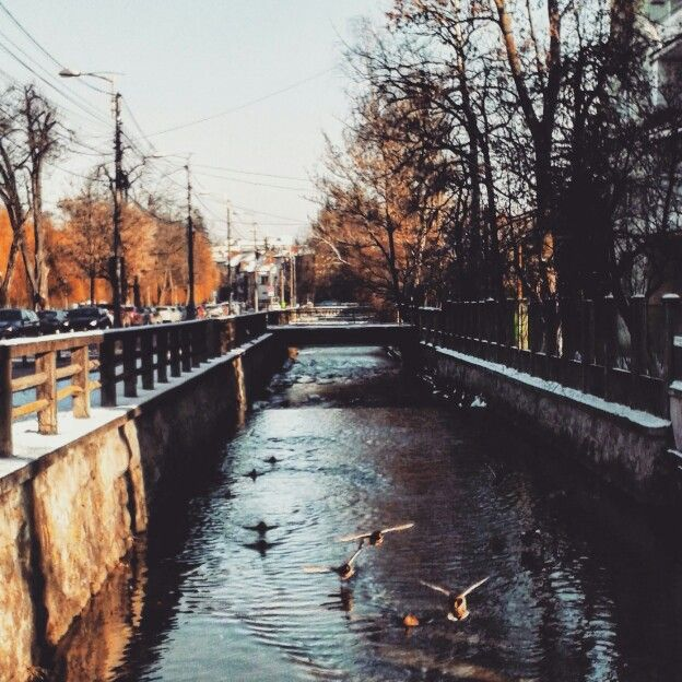 Cluj-Napoca in Cluj f l y