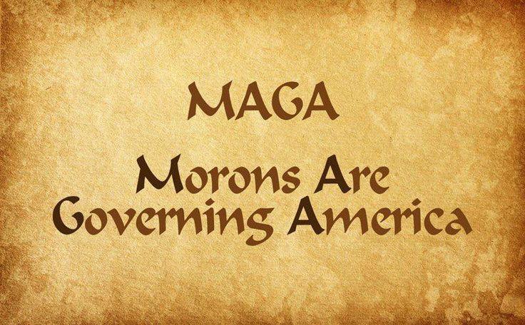 #MAGA (Morons Are Governing America) #NeverTrump #NeverHillary #NeverTrumpOrHillary