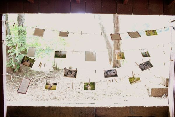 LOVE the idea of clothes lines, and photos for any event: Clotheslines, Wedding Ideas, Cute Ideas, Picture Idea, Chic Photo, Ashlee S Wedding, Clothes Line, Cedarwood Wedding, Clothespins