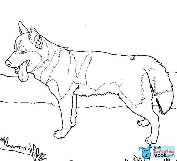Police Dog Coloring Page Deucesheetco Pertaining To Free Download K 9 Police Dog Coloring Pages Siberian Husky Chihuahua