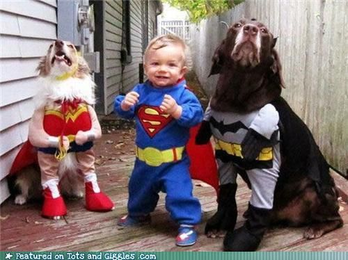 this is one of the cutest things i've ever seen.: Dogs, Halloween Costumes, Justiceleague, Superheroes, Kids, Super Heroes, Cute Costumes, Justice League, Animal