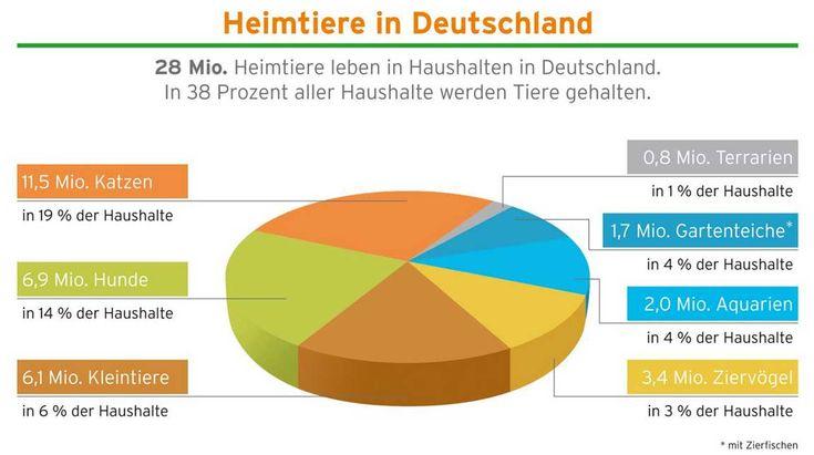 In über einem Drittel der Haushalte in Deutschland leben 28 Millionen Katzen, Hunde, Kleinsäuger und Ziervögel Bild: IVH, ZZF