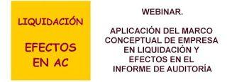 Blog sobre Contabilidad tributación finanzas Valoración y blanqueo capital. Gregorio Labatut Serer: Aplicación del Marco Conceptual de Empresa en Liqu...