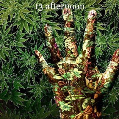 13 afternoon