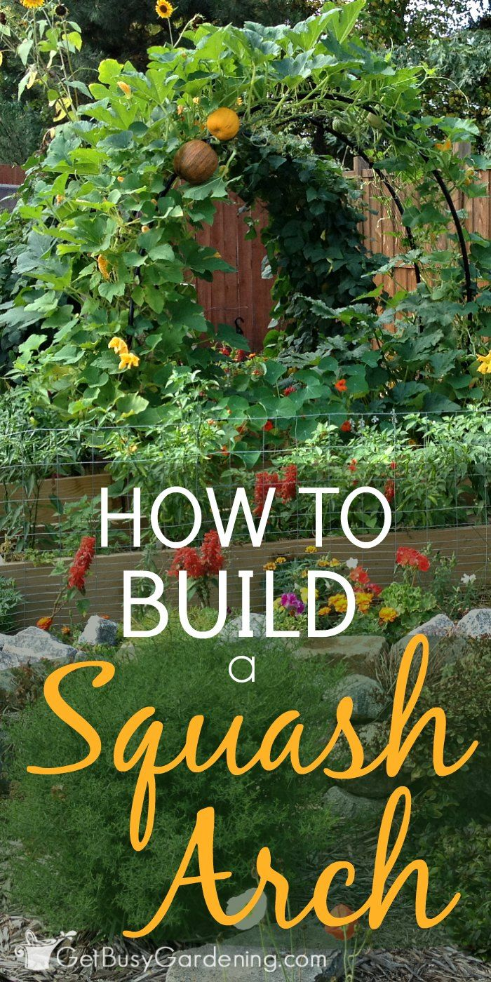 100 preparing your vegetable garden for winter plant a fall
