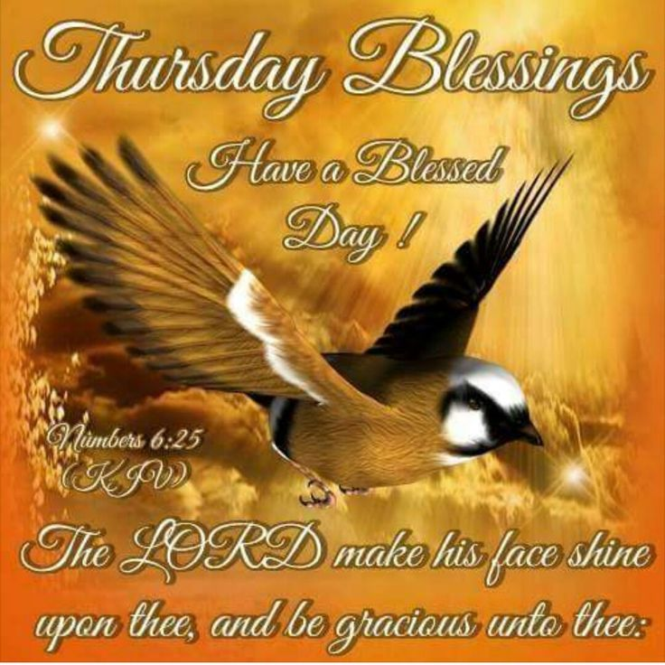 Best Thursday Wishes Quote: 1000+ Ideas About Thursday Greetings On Pinterest