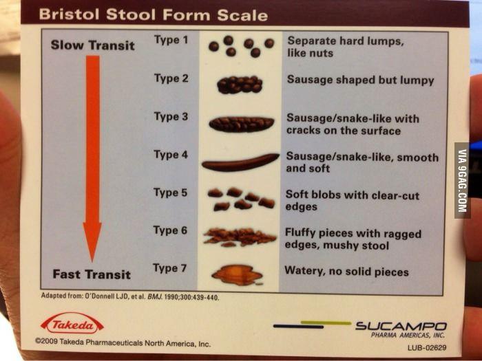 The 25 Best Bristol Stool Scale Ideas On Pinterest Poo