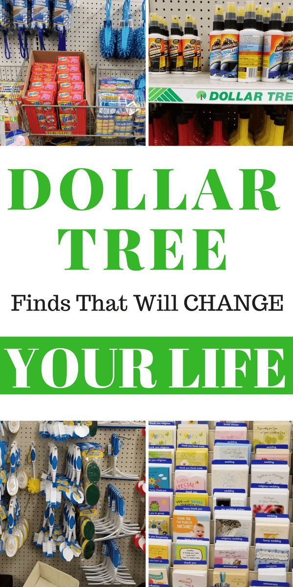 Life Changing Finds You Should Be Ing At Your Nearest Dollar Tree To Save Money The Has A Little Something For Everyone