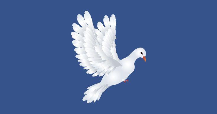 White Pigeon Illustration by annartshock White Pigeon Illustration by annartshock