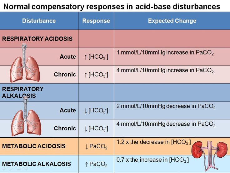 best 25+ respiratory alkalosis ideas on pinterest | metabolic, Skeleton