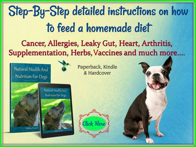 Dont Forget Your Dogs Diet With Arthritis Canine Arthritis And Joint Natural Health Canine Arthritis Health And Nutrition