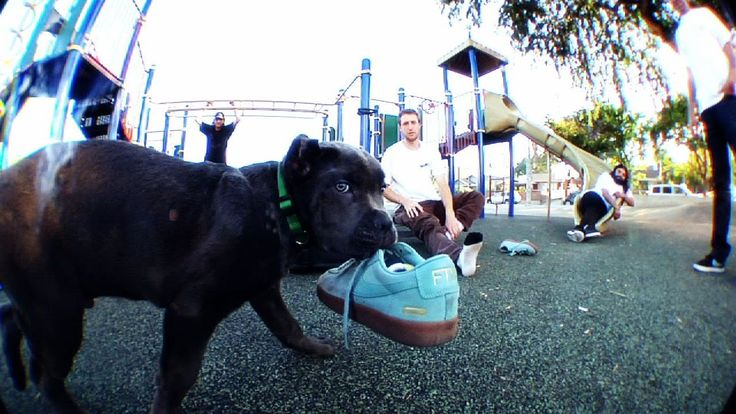 KING PUPPY...A video by William Strobeck for the Supreme/Nike SB Blazer GT collection.  Featuring: Grant Taylor Kevin Bradley Vincent Touzery Eric Koston & Sage Elsesser Sean Pablo Jericho