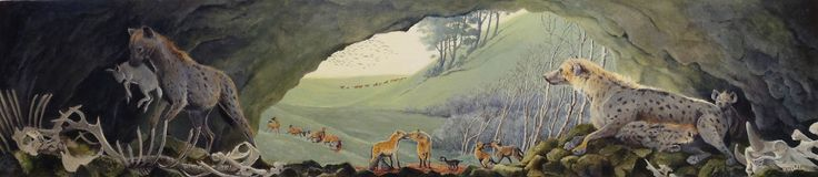 Jane Brayne - Before the last Ice Age Brownes Hole, a cave in the Mendip Hills was used as a den by hyenas and bears. Their bones and those of their prey were discovered by cavers.
