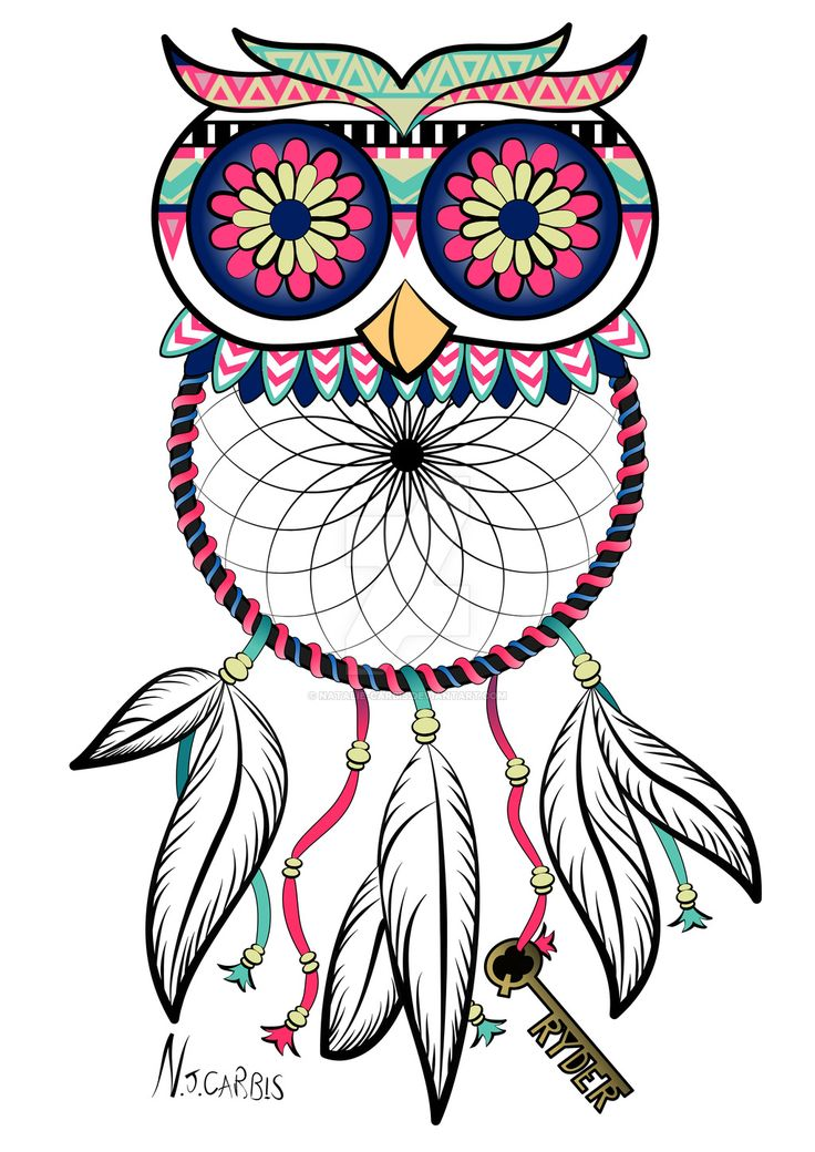 Owl dreamcatcher drawing - photo#18