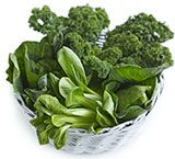 A spotlight on how to choose foods that will give you the iron you need for a energetic lifestyle.