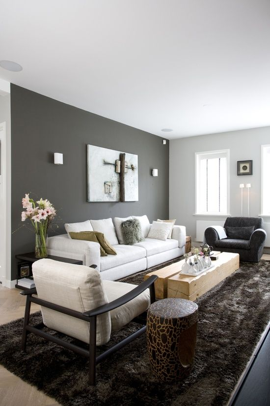 Light Gray Wall Paint: Living room, dark grey wall, light grey couch, shiny chocolat carpet.,Lighting