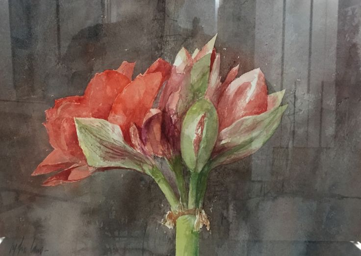 Pedro Cano - Flor en Galería la Aurora