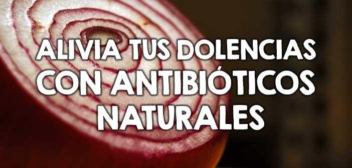 Alivia tus dolencias con antibióticos naturales  http://nutricionysaludyg.com/salud/antibioticos-naturales-alivia-dolencias/