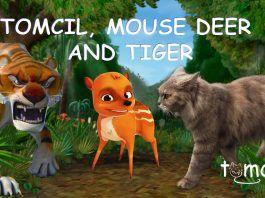 TOMCIL, MOUSE DEER AND TIGER | Storytelling for Children
