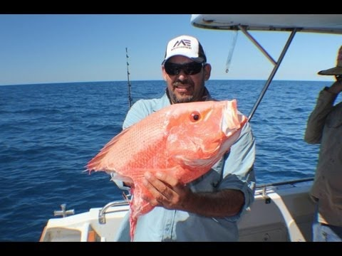 21 best images about deep sea fishing pensacola on pinterest for Pensacola deep sea fishing