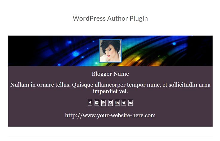 WordPress Author Plugin