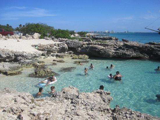 Malmok Beach Snorkeling - Aruba
