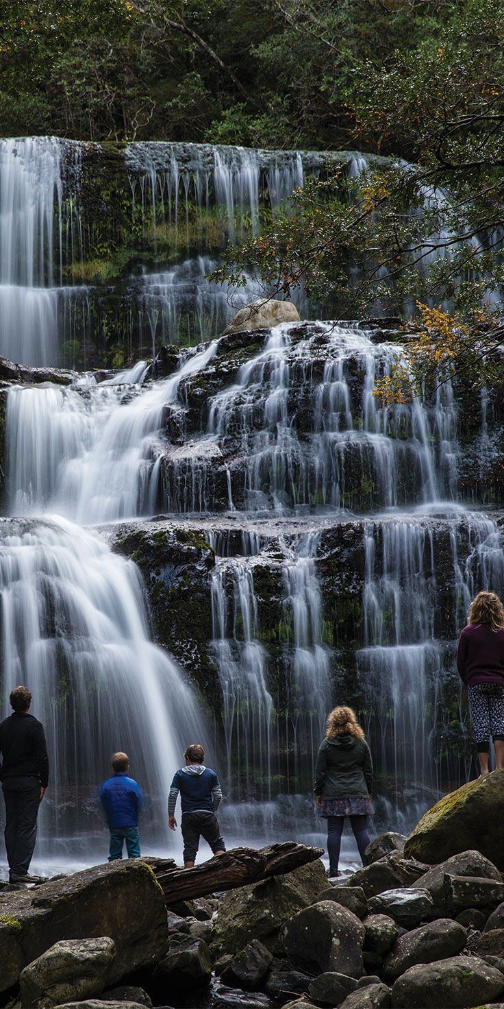 Nature at its finest - gazing at the transquil Liffey Falls in Tasmania by Sean Scott