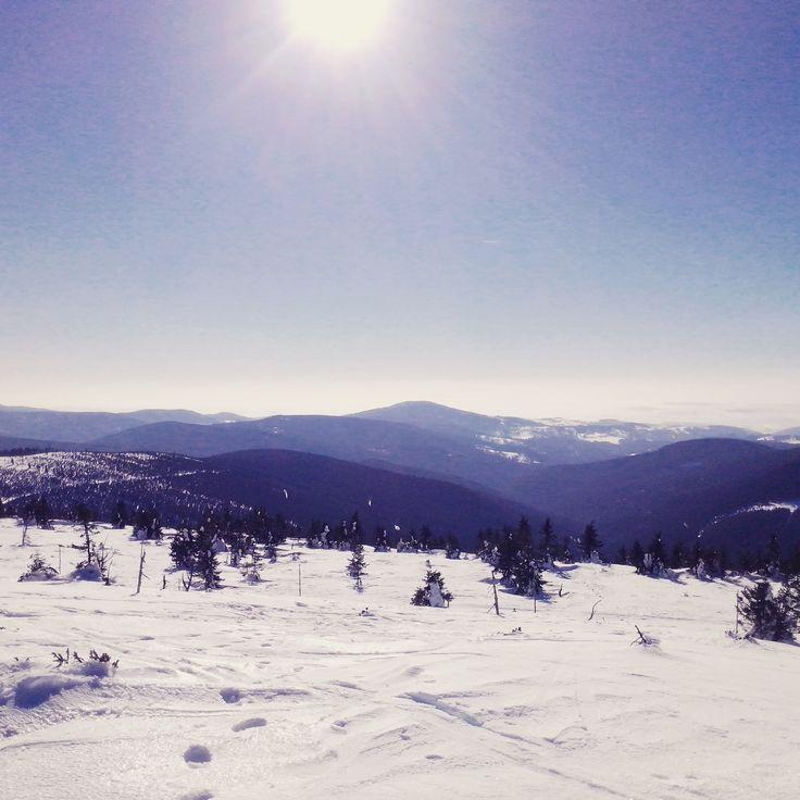 Winter. Mountains.