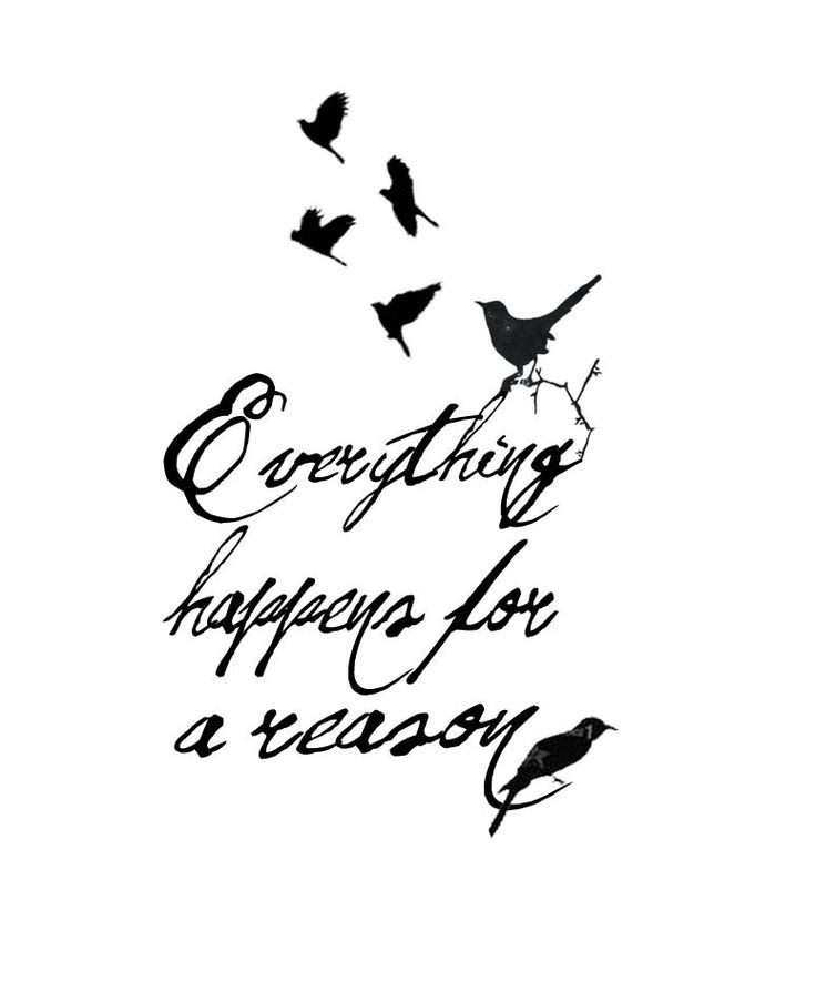 Tattoo idea for my upper back/back of neck with birds slightly going up the back of my neck. Any suggestions welcome :) #EverythingHappensForAReason #Tattoo