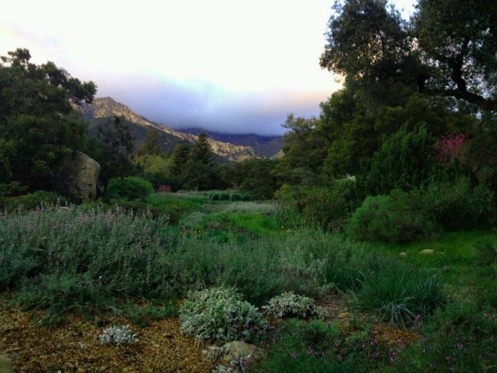 botanical gardens santa barbara pinterest gardens