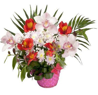 cesto di alstromeria rosse ed orchidee bianche