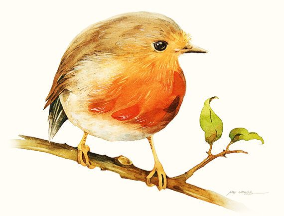 Watercolor Painting - Little Robin Bird Painting - Watercolor Robin Bird - 5 by 7 print - Archival Print, Minimalist, Home Decor, Nature Art