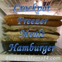 ~ Crockpot Freezer Meals Hamburger