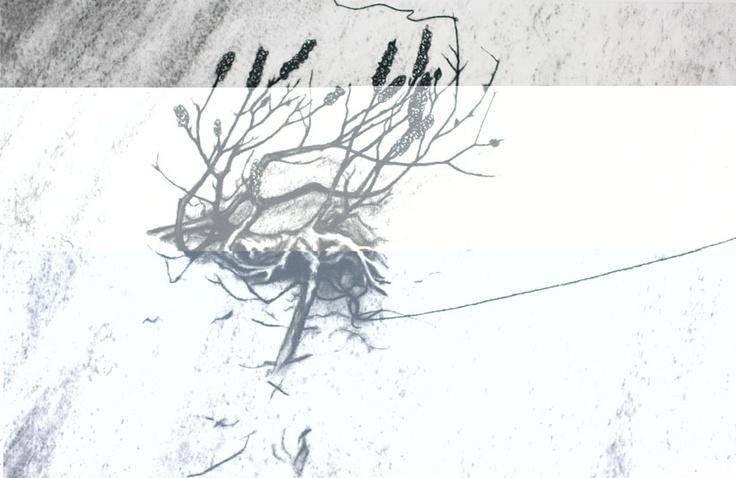 Tied Digital Print