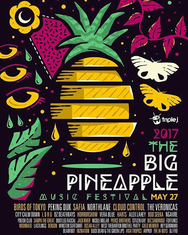The Big Pinapple Festival initial line up for 2017