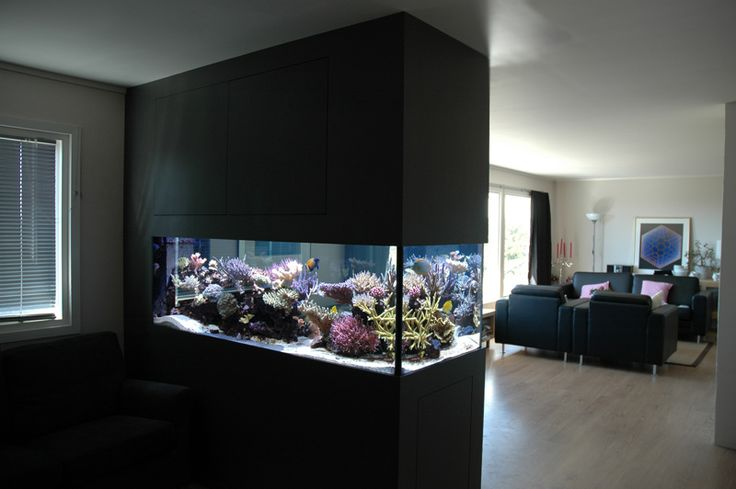 reef builder Archives: Modern Aquarium design for reef aquaria and freshwater