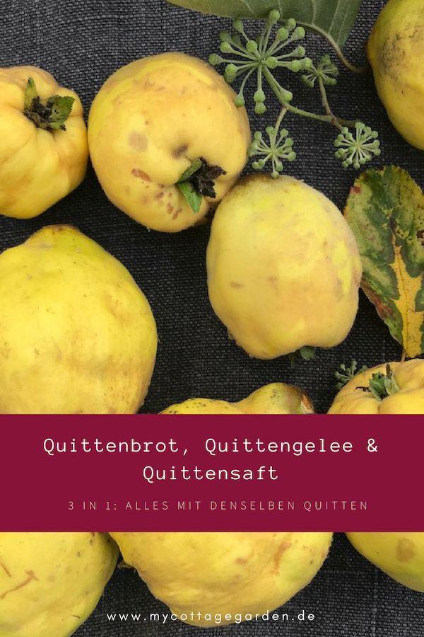 835464891c42210af6a8e7804b332247 - Quittensaft Rezepte